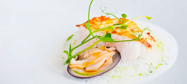 Designer dish: white fish and shellfish